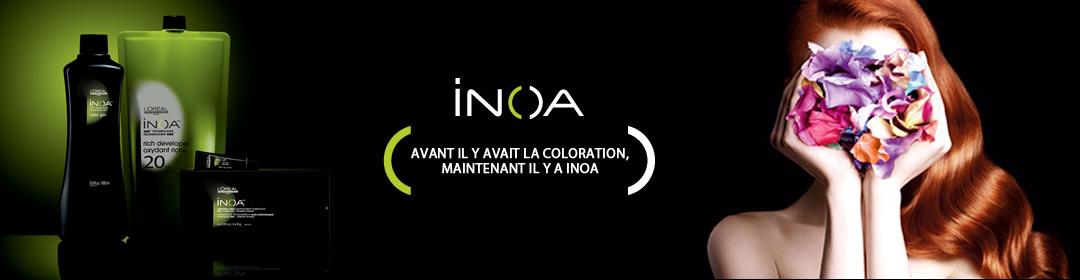 inoa robin gauthier - Coloration Inoa