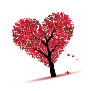 st valentin robin gauthier